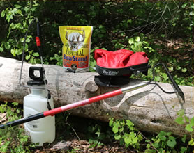 How To Plant The Best Food Plots With Minimal Equipment Deer